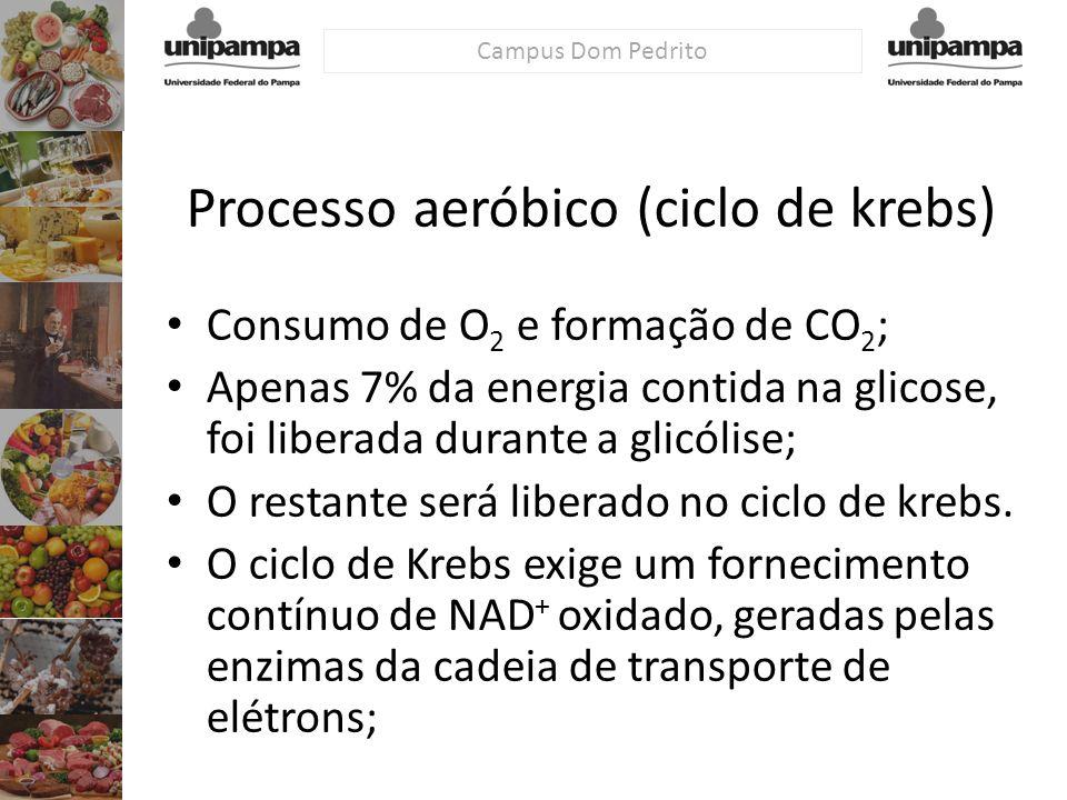 Processo aeróbico (ciclo de krebs)