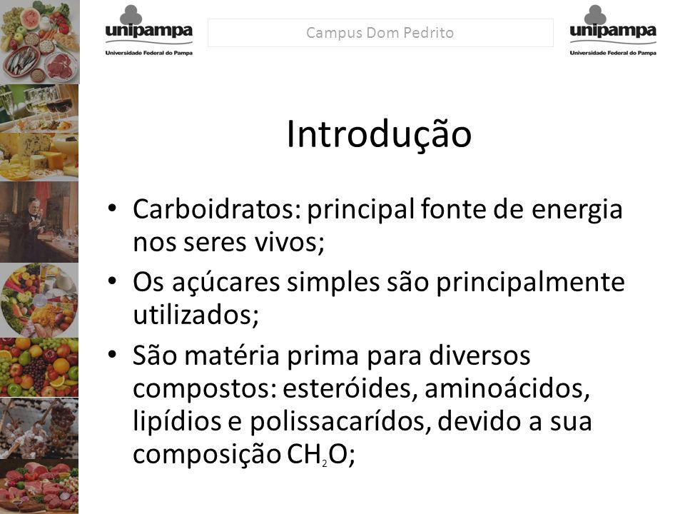 Introdução Carboidratos: principal fonte de energia nos seres vivos;