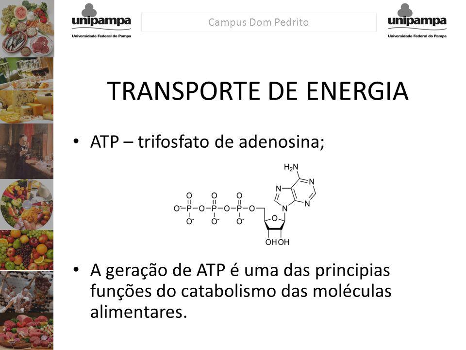 TRANSPORTE DE ENERGIA ATP – trifosfato de adenosina;