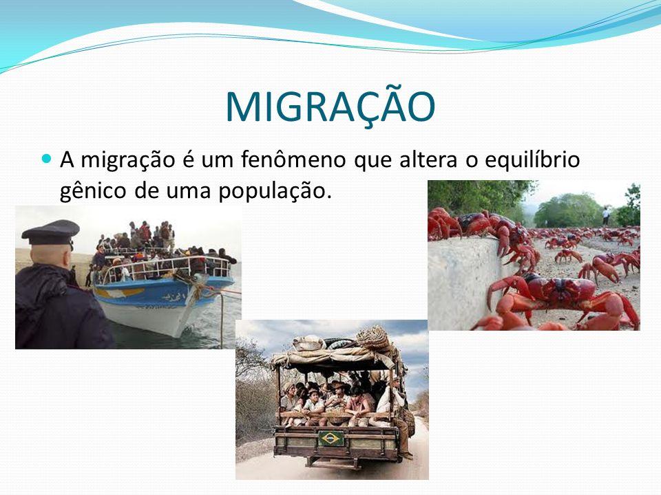 MIGRAÇÃO A migração é um fenômeno que altera o equilíbrio gênico de uma população.