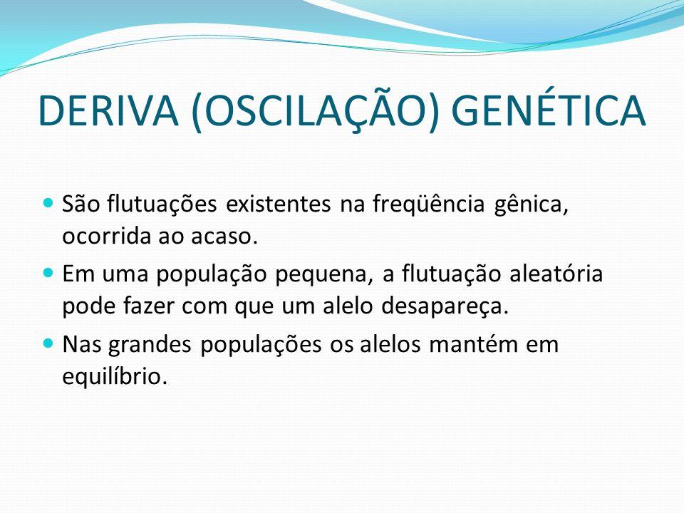 DERIVA (OSCILAÇÃO) GENÉTICA
