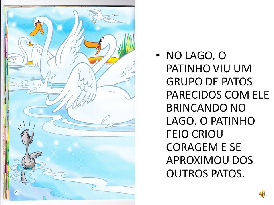NO LAGO, O PATINHO VIU UM GRUPO DE PATOS PARECIDOS COM ELE BRINCANDO NO LAGO.