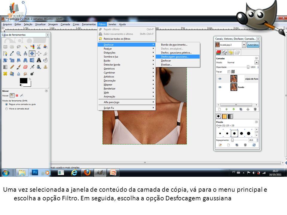 Uma vez selecionada a janela de conteúdo da camada de cópia, vá para o menu principal e escolha a opção Filtro.