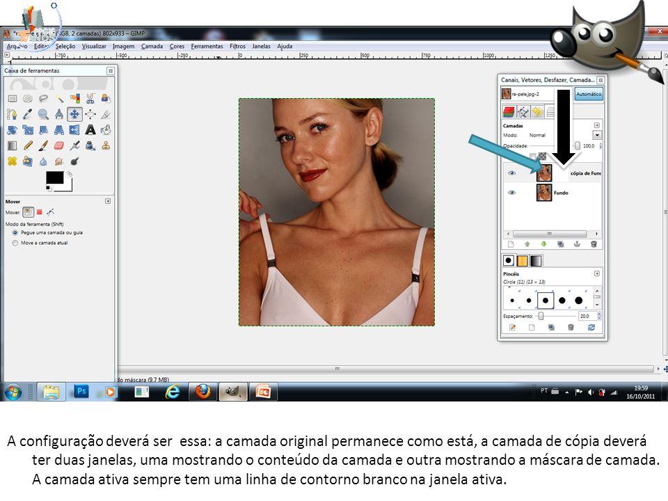 A configuração deverá ser essa: a camada original permanece como está, a camada de cópia deverá ter duas janelas, uma mostrando o conteúdo da camada e outra mostrando a máscara de camada.