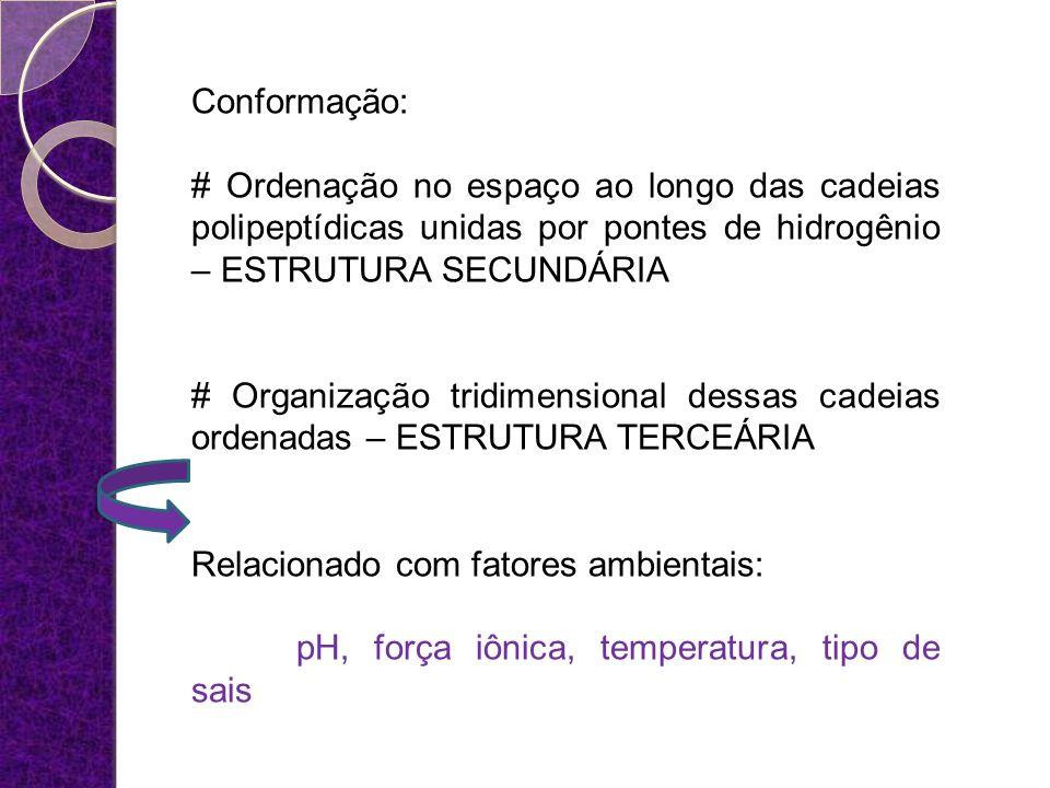 Conformação: # Ordenação no espaço ao longo das cadeias polipeptídicas unidas por pontes de hidrogênio – ESTRUTURA SECUNDÁRIA.