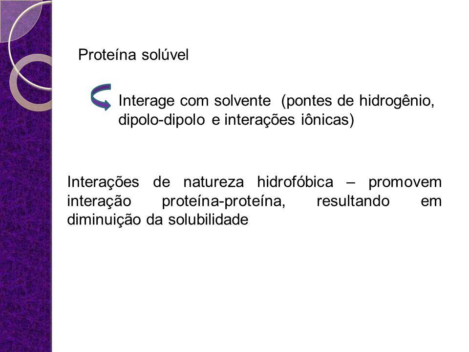 Proteína solúvel Interage com solvente (pontes de hidrogênio, dipolo-dipolo e interações iônicas)