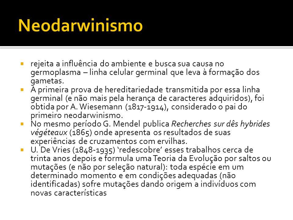 Neodarwinismo rejeita a influência do ambiente e busca sua causa no germoplasma – linha celular germinal que leva à formação dos gametas.