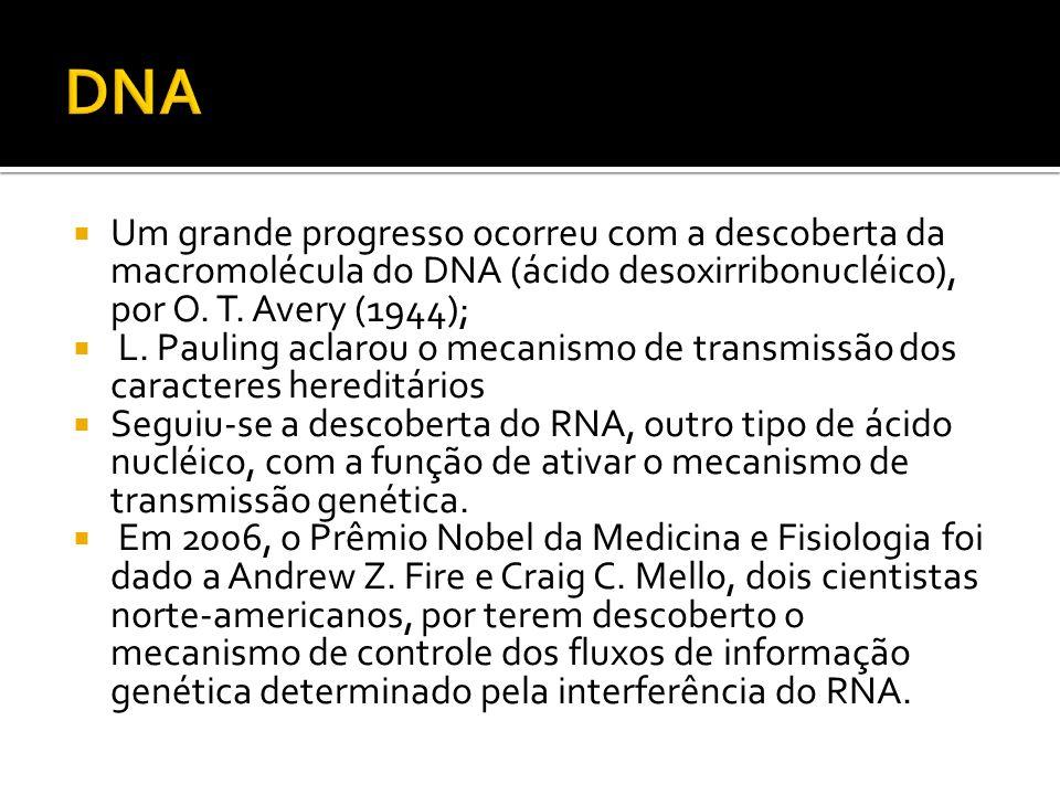 DNA Um grande progresso ocorreu com a descoberta da macromolécula do DNA (ácido desoxirribonucléico), por O. T. Avery (1944);