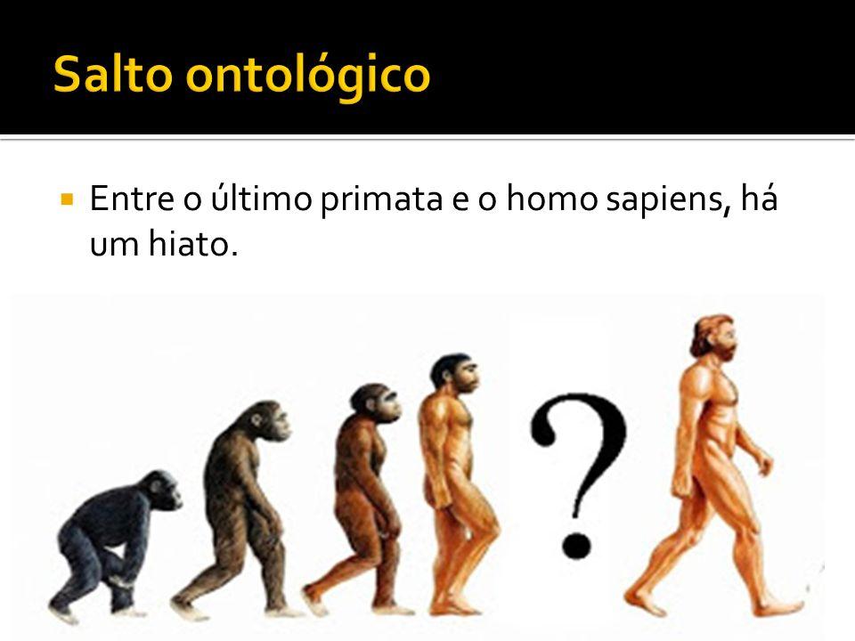 Salto ontológico Entre o último primata e o homo sapiens, há um hiato.