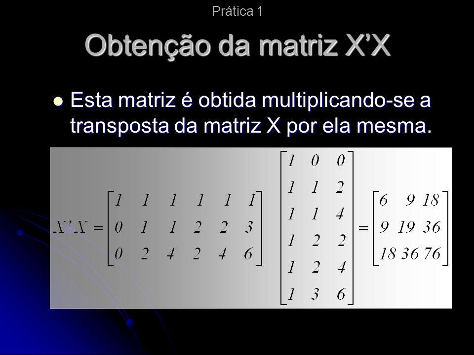 Prática 1 Obtenção da matriz X'X.