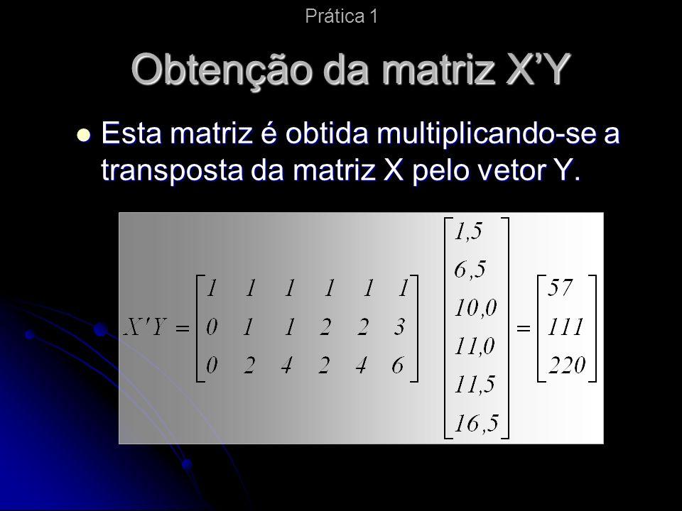 Prática 1 Obtenção da matriz X'Y.