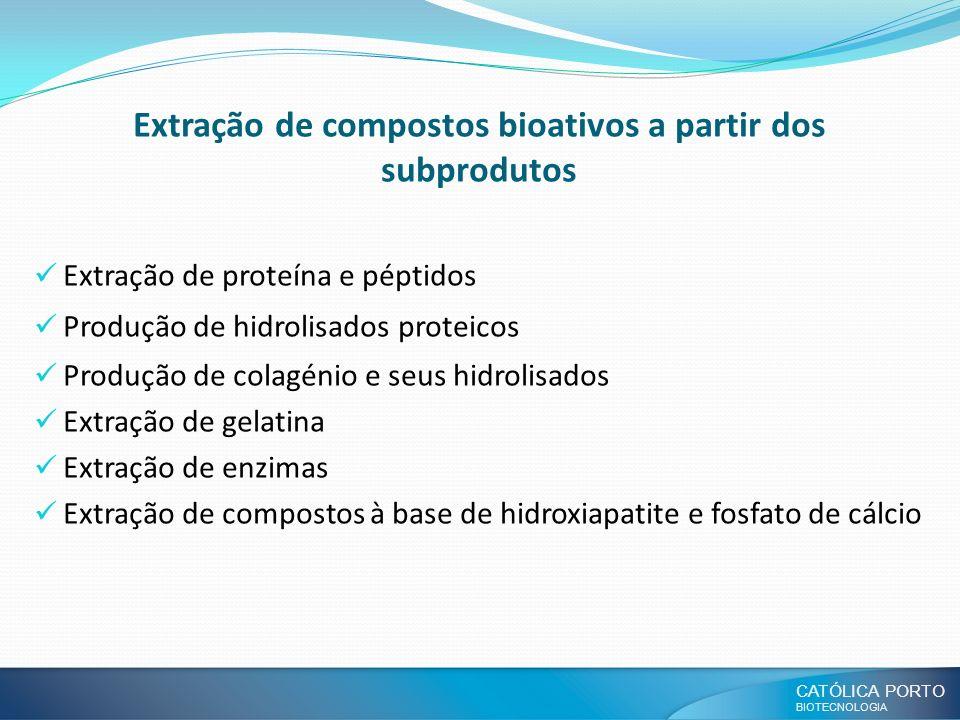Extração de compostos bioativos a partir dos subprodutos