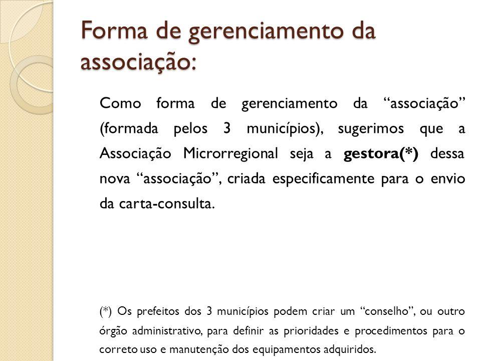 Forma de gerenciamento da associação: