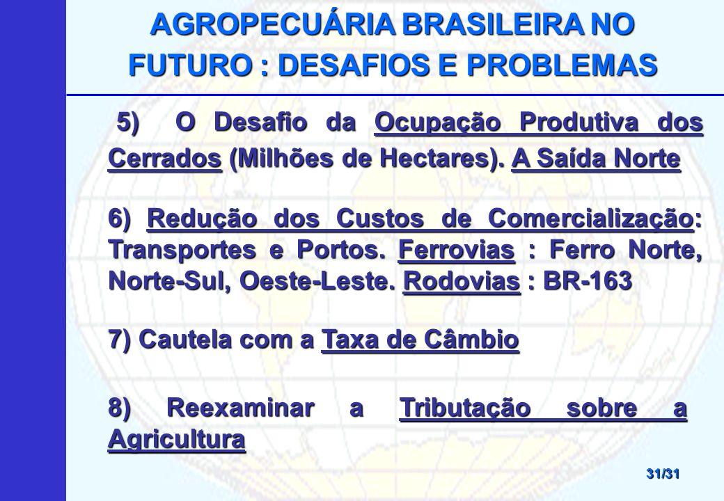 AGROPECUÁRIA BRASILEIRA NO FUTURO : DESAFIOS E PROBLEMAS