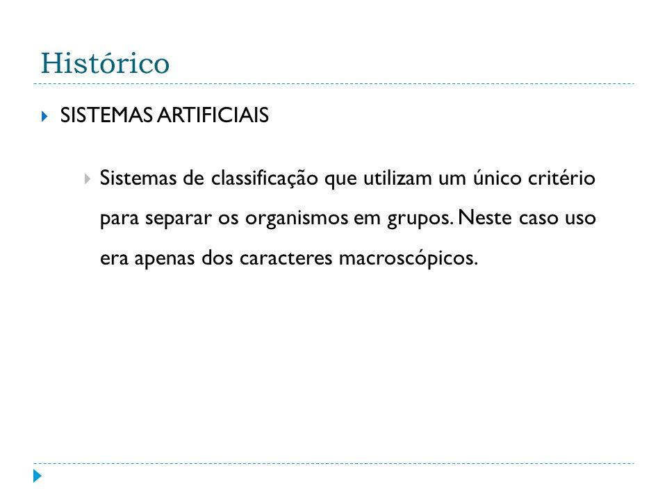 Histórico SISTEMAS ARTIFICIAIS