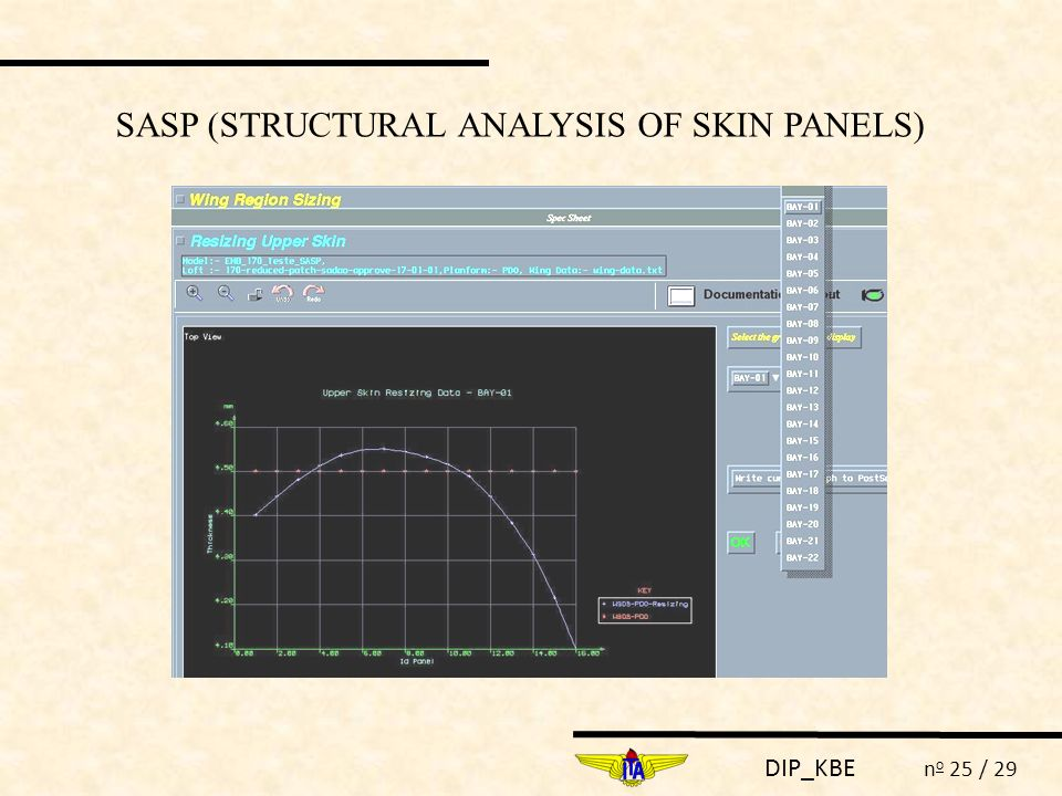 SASP (STRUCTURAL ANALYSIS OF SKIN PANELS)