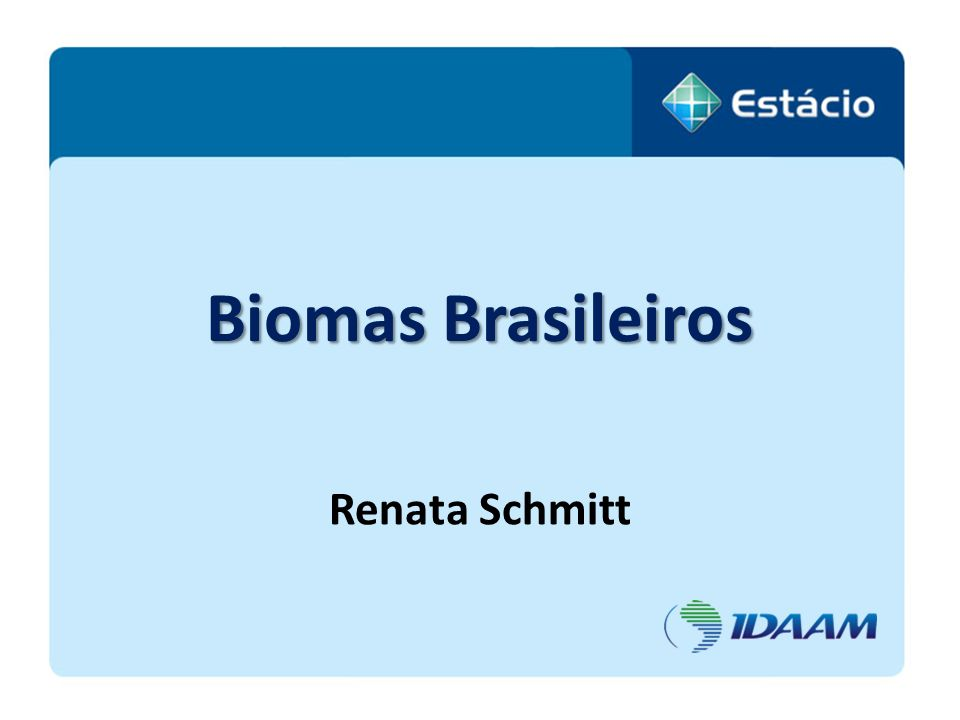 Biomas Brasileiros Renata Schmitt