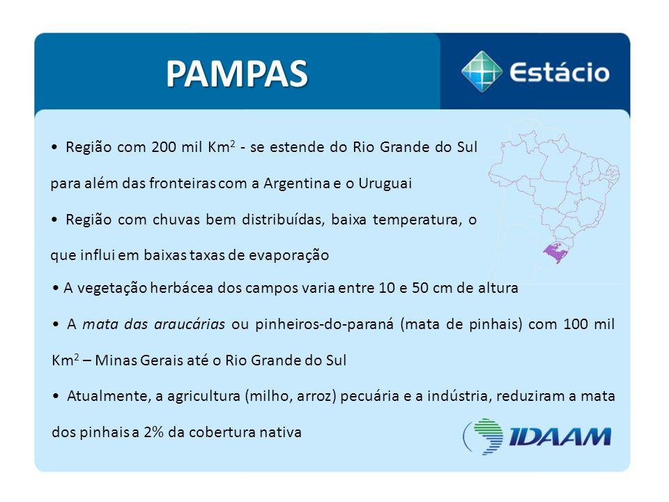 PAMPAS Região com 200 mil Km2 - se estende do Rio Grande do Sul para além das fronteiras com a Argentina e o Uruguai.