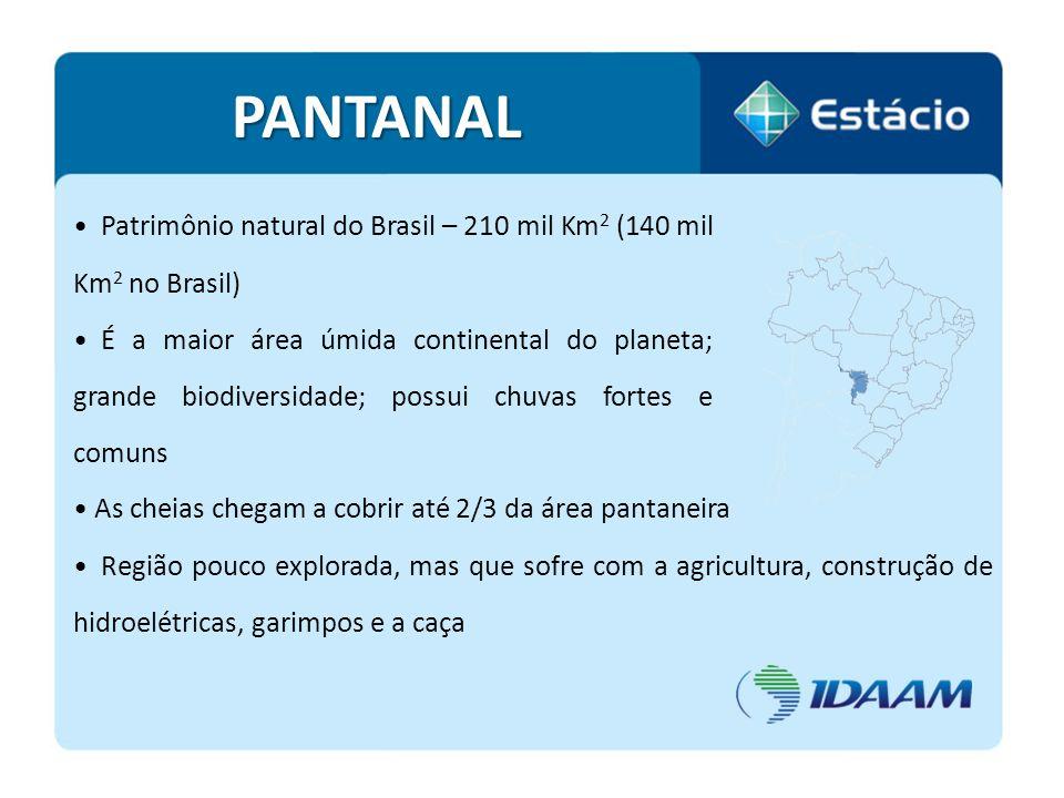 PANTANAL Patrimônio natural do Brasil – 210 mil Km2 (140 mil Km2 no Brasil)