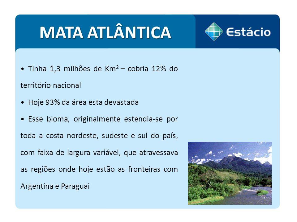 MATA ATLÂNTICA Tinha 1,3 milhões de Km2 – cobria 12% do território nacional. Hoje 93% da área esta devastada.