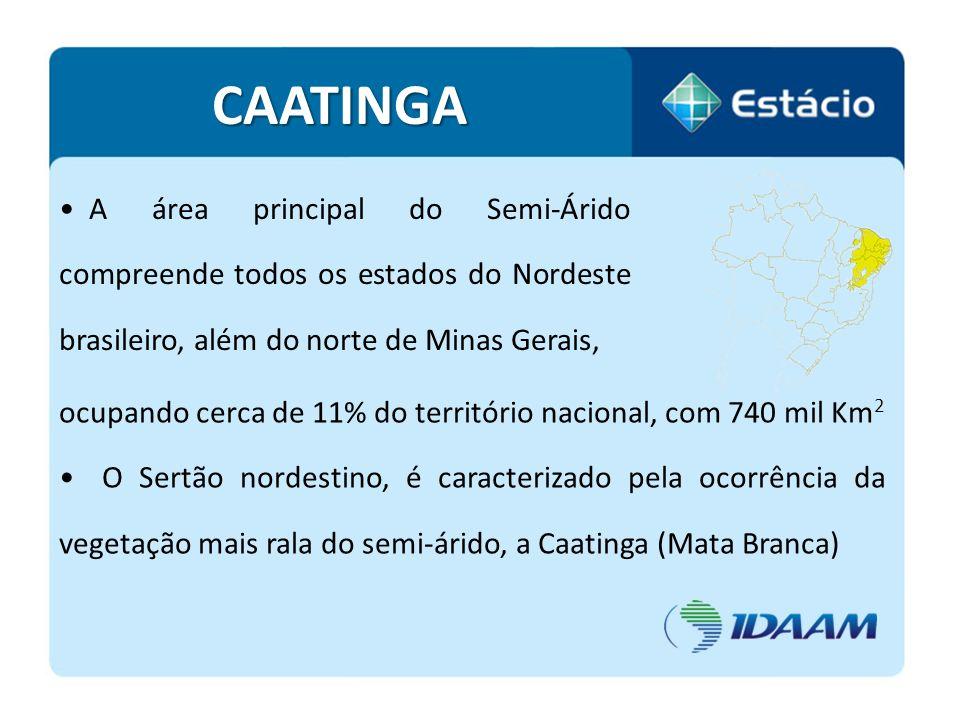 CAATINGA A área principal do Semi-Árido compreende todos os estados do Nordeste brasileiro, além do norte de Minas Gerais,
