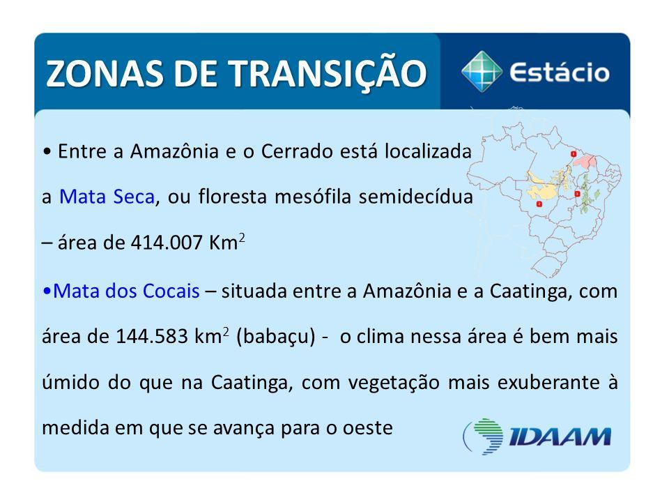 ZONAS DE TRANSIÇÃO Entre a Amazônia e o Cerrado está localizada a Mata Seca, ou floresta mesófila semidecídua – área de 414.007 Km2.