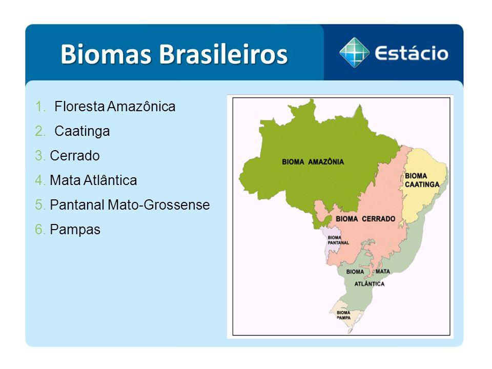 Biomas Brasileiros Floresta Amazônica Caatinga 3. Cerrado