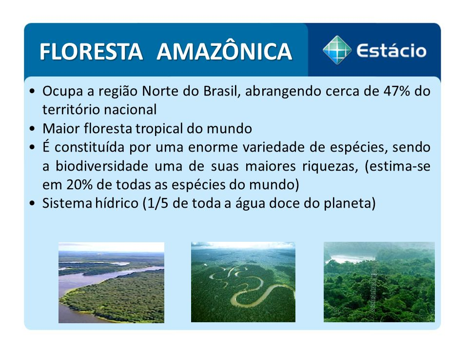 FLORESTA AMAZÔNICA Ocupa a região Norte do Brasil, abrangendo cerca de 47% do território nacional.