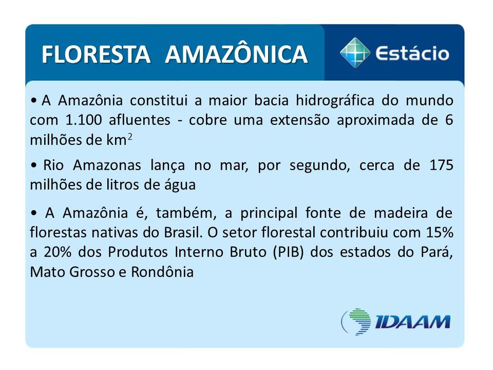 FLORESTA AMAZÔNICA A Amazônia constitui a maior bacia hidrográfica do mundo com 1.100 afluentes - cobre uma extensão aproximada de 6 milhões de km2.
