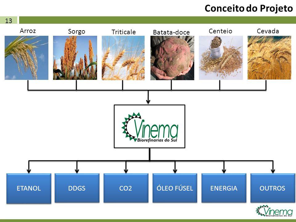 Conceito do Projeto 13 Arroz Triticale Sorgo Batata-doce Centeio