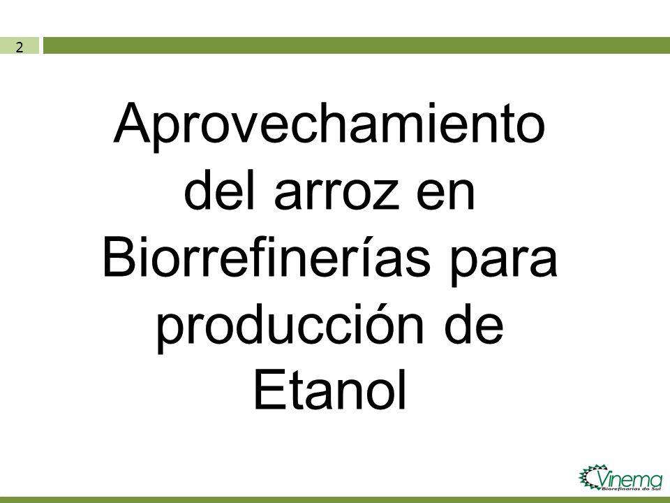Aprovechamiento del arroz en Biorrefinerías para producción de Etanol