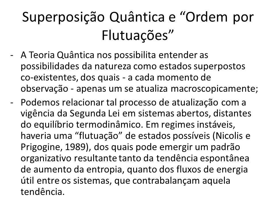 Superposição Quântica e Ordem por Flutuações