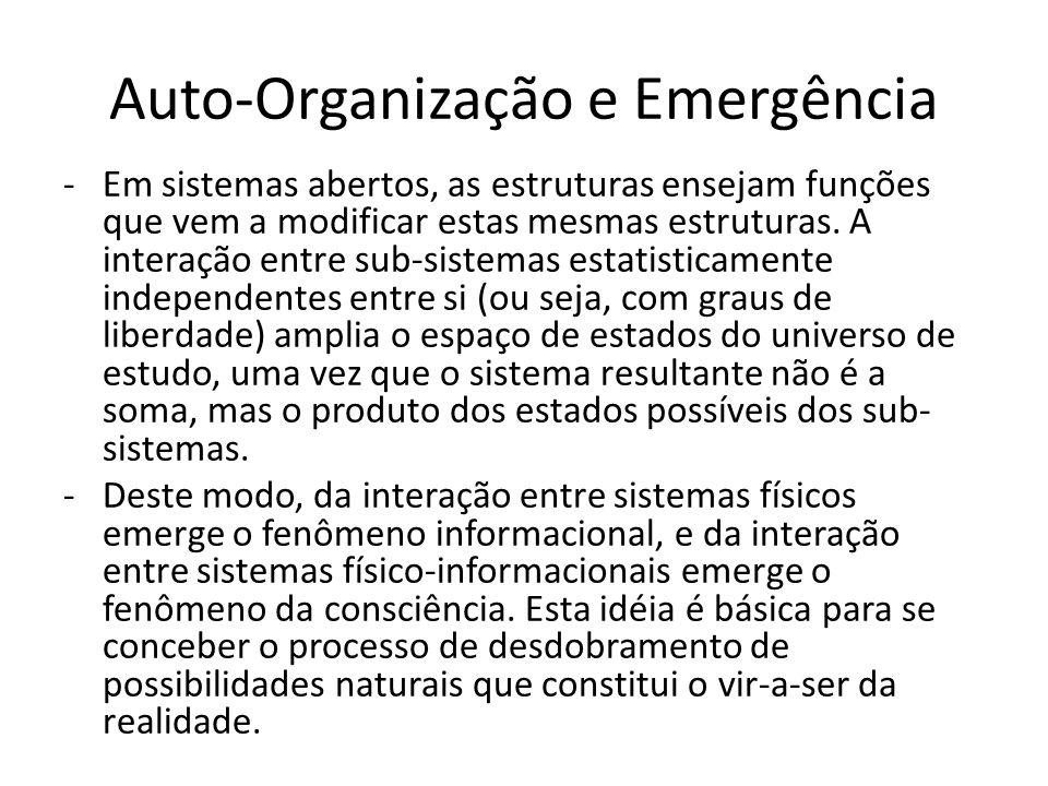 Auto-Organização e Emergência