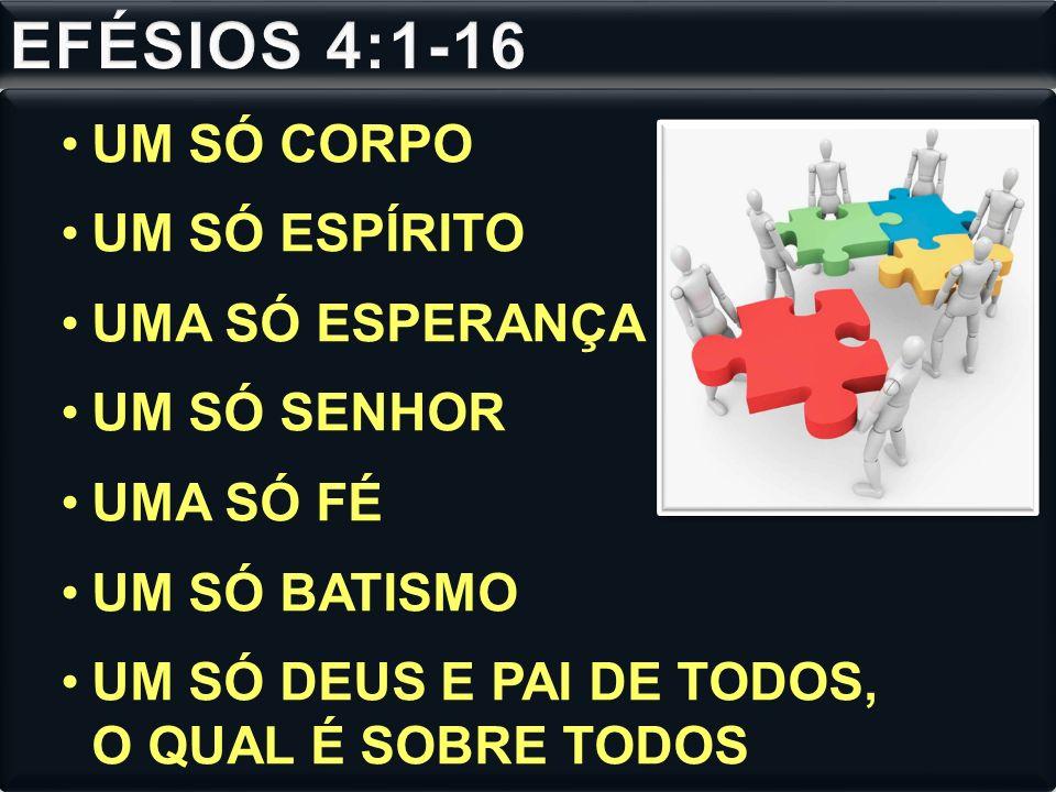 EFÉSIOS 4:1-16 UM SÓ CORPO UM SÓ ESPÍRITO UMA SÓ ESPERANÇA