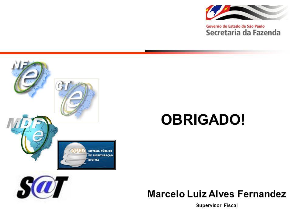 Marcelo Luiz Alves Fernandez