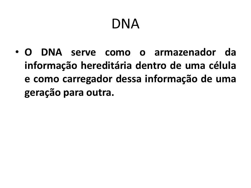 DNA O DNA serve como o armazenador da informação hereditária dentro de uma célula e como carregador dessa informação de uma geração para outra.
