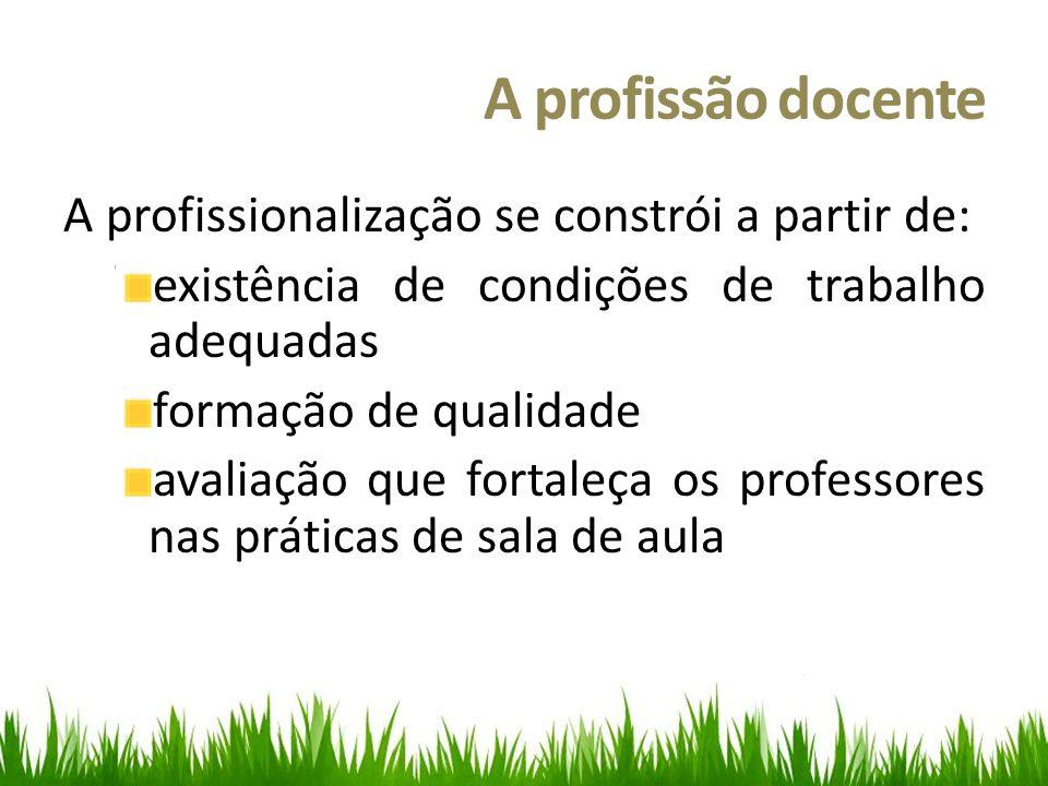 A profissão docente A profissionalização se constrói a partir de: