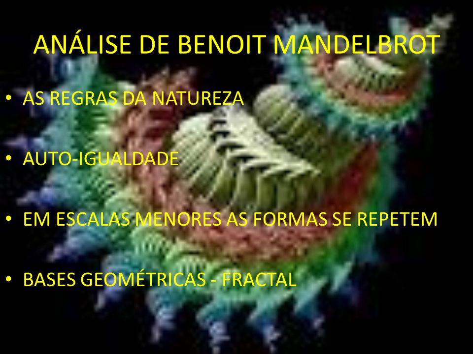 ANÁLISE DE BENOIT MANDELBROT