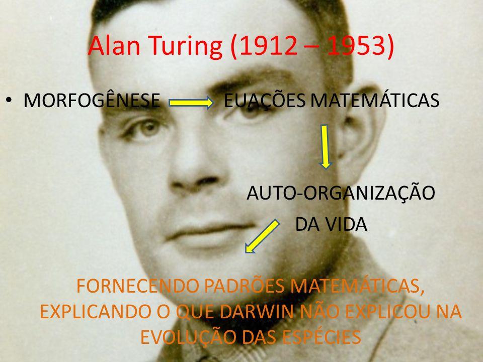 Alan Turing (1912 – 1953) MORFOGÊNESE EUAÇÕES MATEMÁTICAS