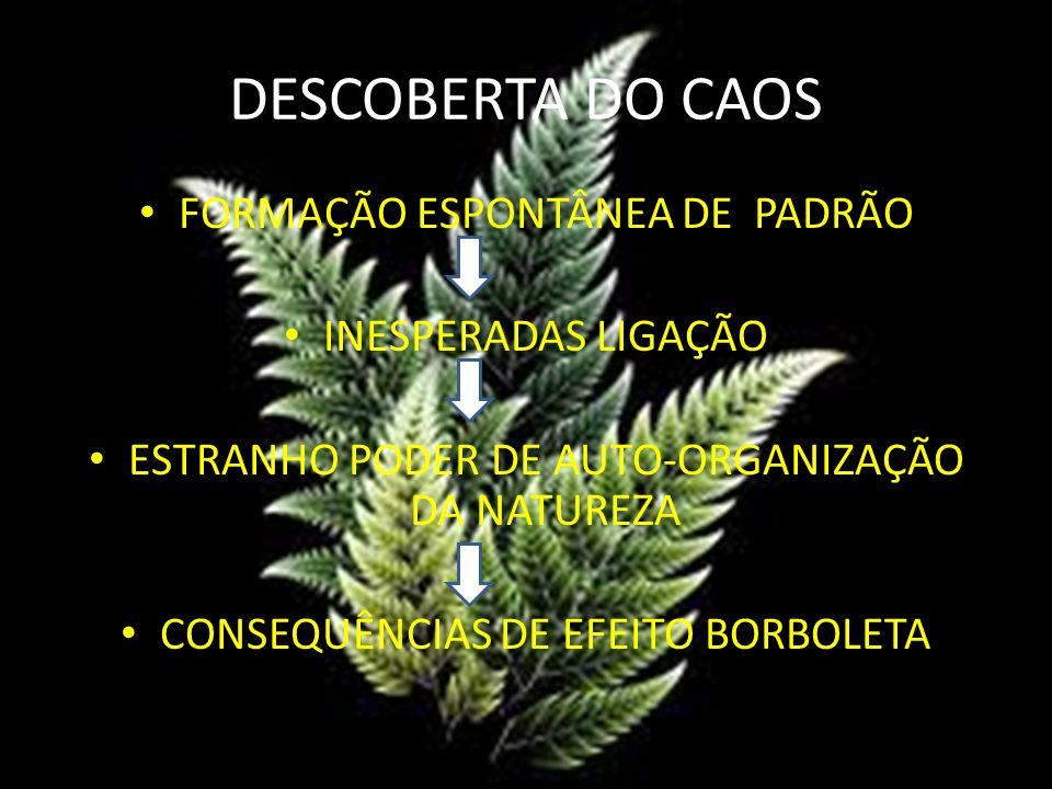 DESCOBERTA DO CAOS FORMAÇÃO ESPONTÂNEA DE PADRÃO INESPERADAS LIGAÇÃO