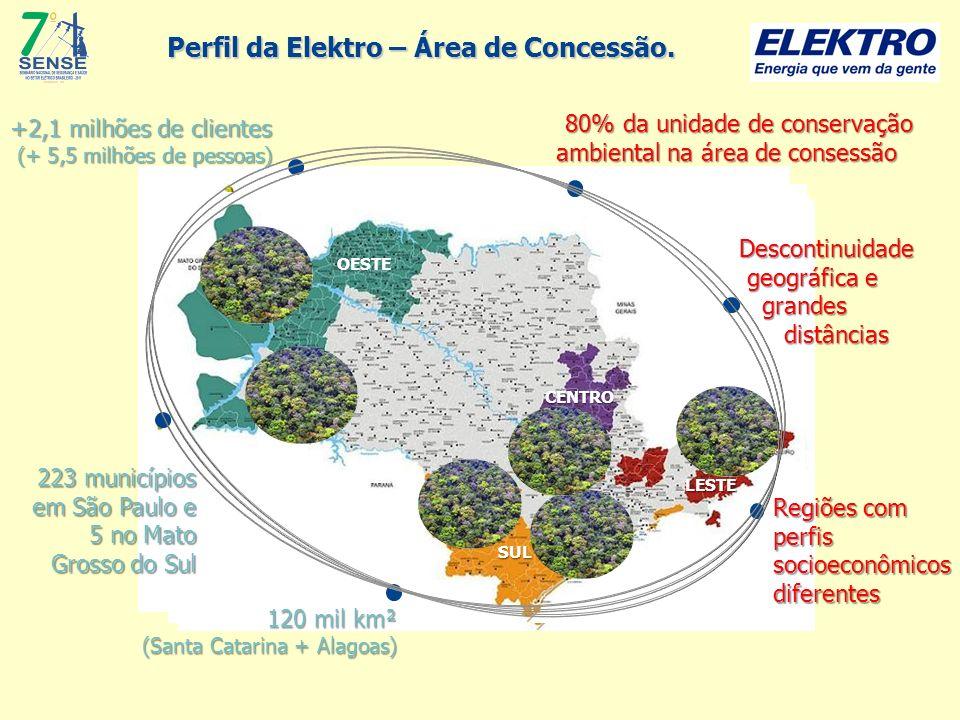 Perfil da Elektro – Área de Concessão.