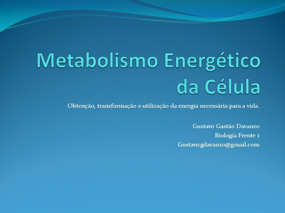 Metabolismo Energético da Célula