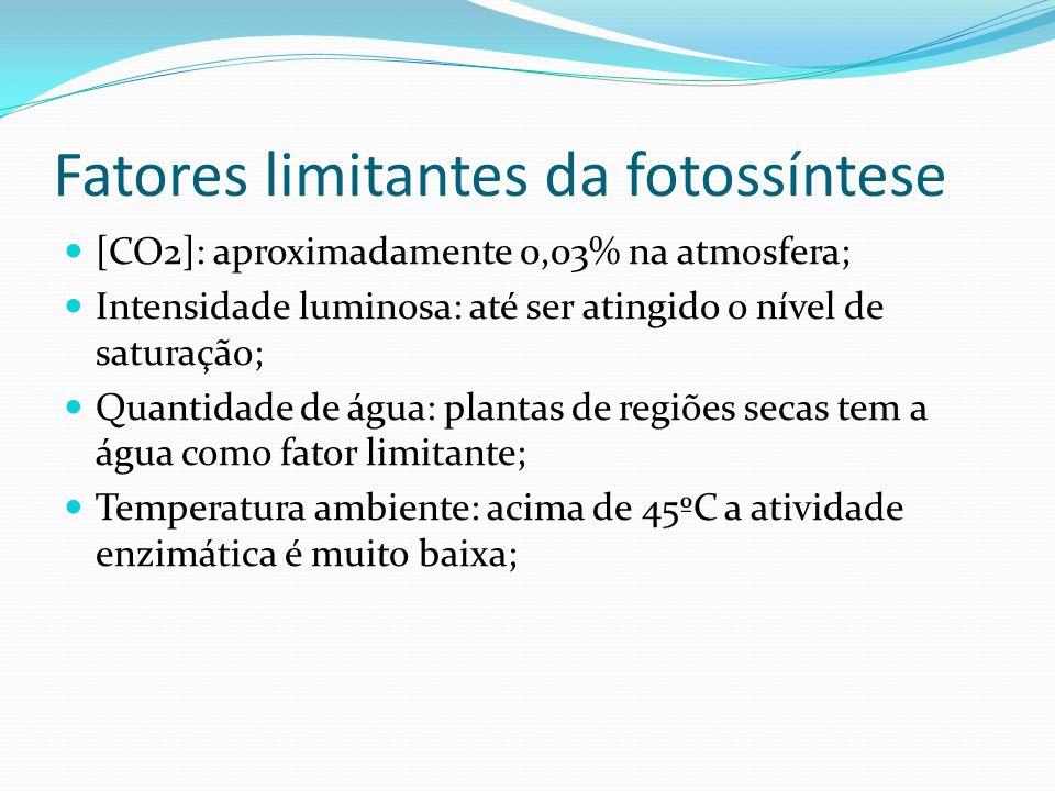 Fatores limitantes da fotossíntese