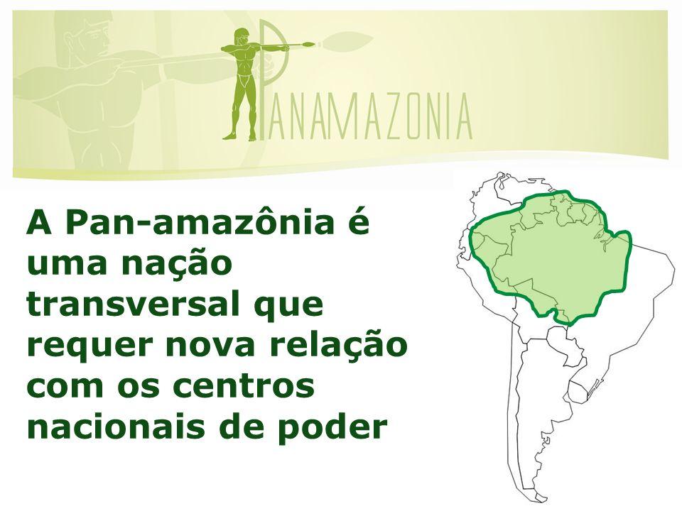 A Pan-amazônia é uma nação transversal que