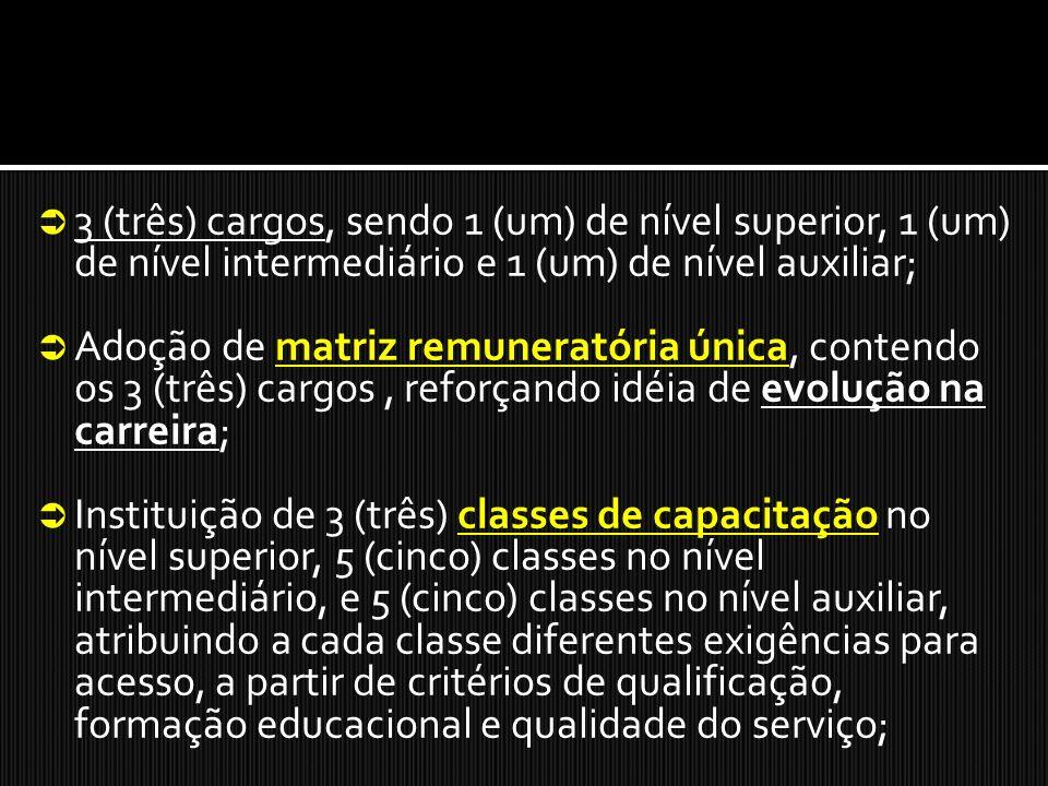 3 (três) cargos, sendo 1 (um) de nível superior, 1 (um) de nível intermediário e 1 (um) de nível auxiliar;