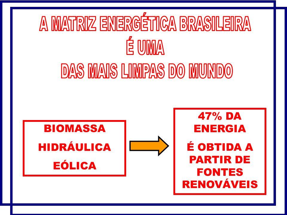 É OBTIDA A PARTIR DE FONTES RENOVÁVEIS