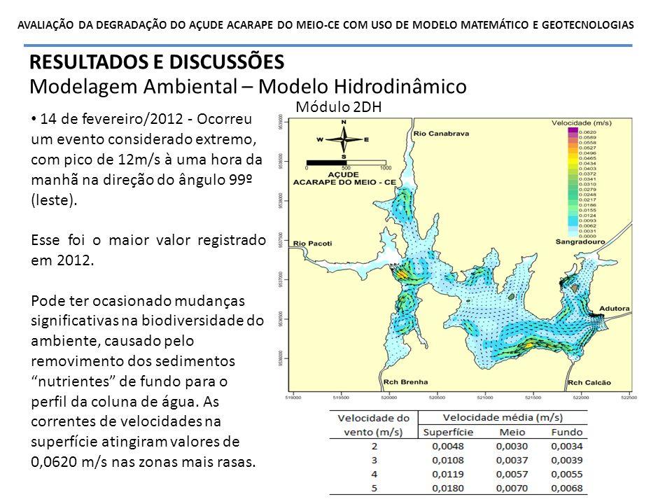 RESULTADOS E DISCUSSÕES Modelagem Ambiental – Modelo Hidrodinâmico