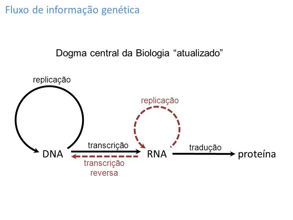Fluxo de informação genética