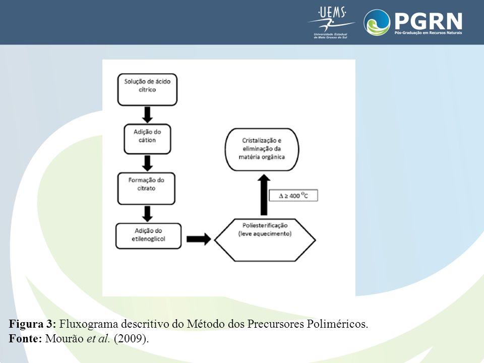Figura 3: Fluxograma descritivo do Método dos Precursores Poliméricos