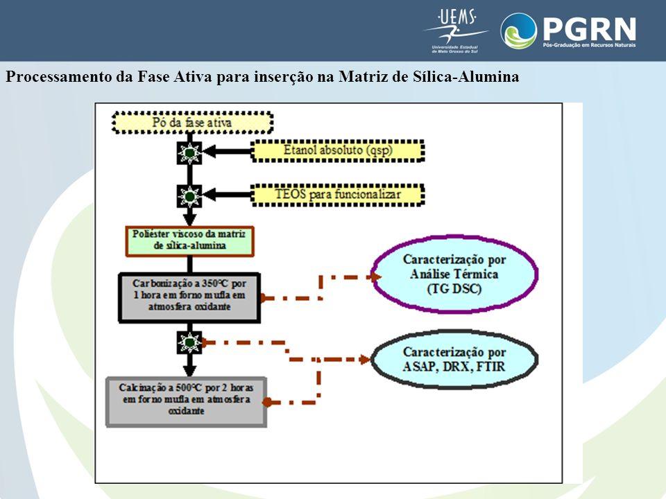 Processamento da Fase Ativa para inserção na Matriz de Sílica-Alumina